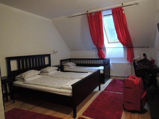 Stari Tisler: spacious and clean room