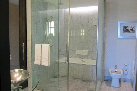 Park Hyatt Mendoza : Rm 531 bathroom