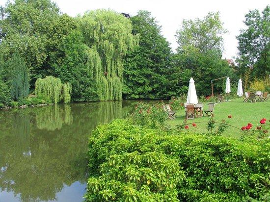 Hotel Chateau d'Aubry: Парк и пруд