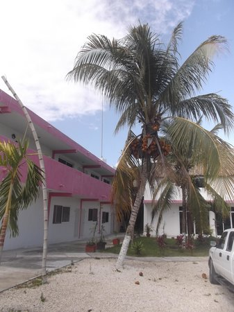 Hotel Dana Express Bacalar: Stationnement - 22 février 2014.