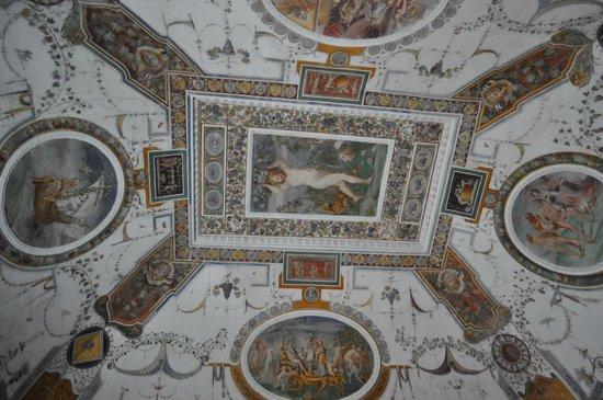 Palazzo Farnese: Volta ed affresco di una delle sale