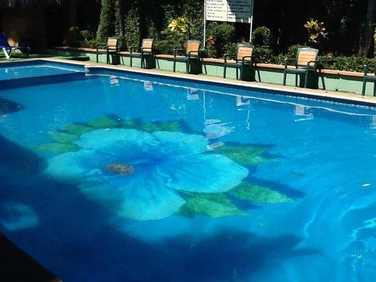 Hotel Maya Tulipanes: Pool
