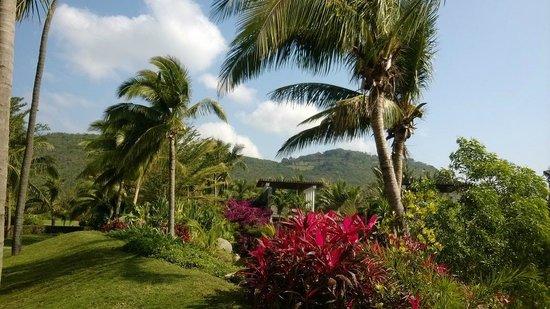 Banyan Tree Sanya: Hotel area