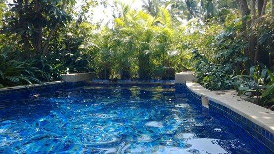 Banyan Tree Sanya: Pool at our villa