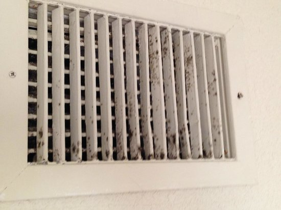 Embassy Suites by Hilton Palm Beach Gardens PGA Boulevard : Vent in bedroom
