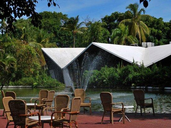Bavaro Princess All Suites Resort, Spa & Casino: цапли и фламинго где-то по близости