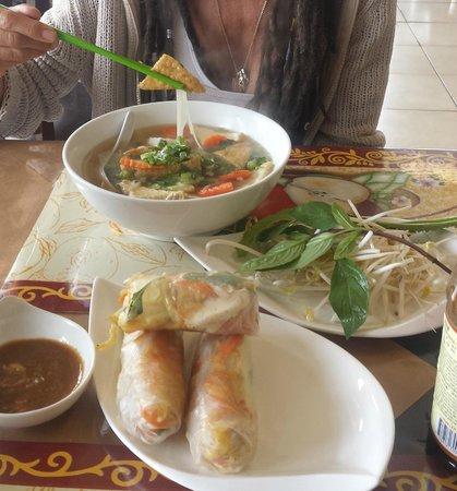 Garden Cafe Restaurant: Vegan Pho & Spring rolls