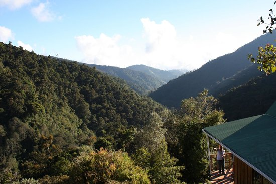 Quetzal Valley Cabins : view from our cabin