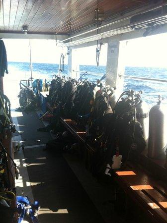 Freedom Divers Phuket: Prep for Dive 2