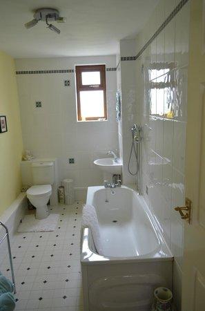 Plas Newydd Farm B&B: En suite bathroom for Twin bedded room