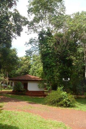 Orquídeas Hotel & Cabañas: cabaña y jardines