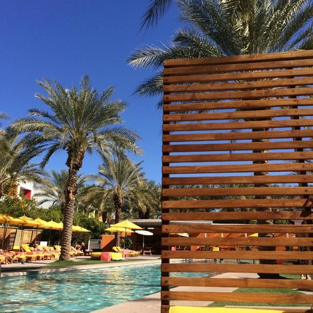 Saguaro Scottsdale: Pool Area
