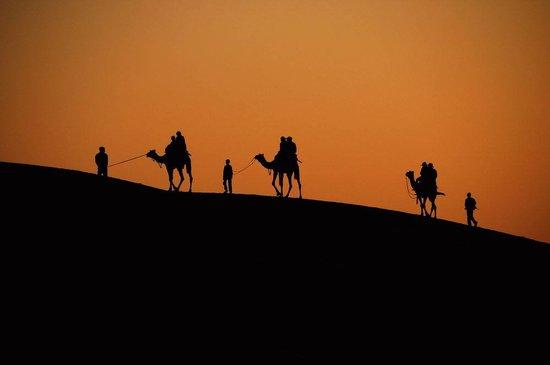 Morocco Culture Tours: Camel Trekking in the Desert