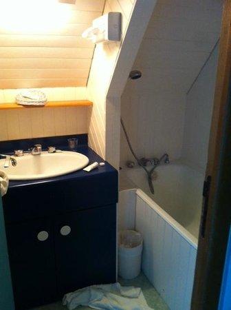 Le Manoir de la Roche Torin : Salle de bains