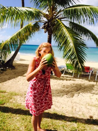 Cottages By The Sea: The coconut milk has a watery, slightly sweet taste