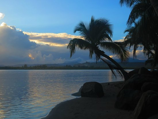 Melia Coco Beach : Beach area in the morning