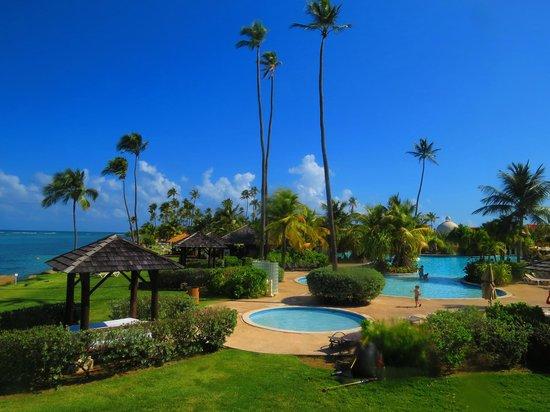 Gran Melia Golf Resort Puerto Rico : Pool area