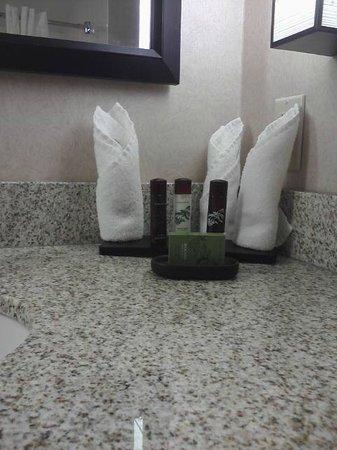 Embassy Suites by Hilton Detroit Metro Airport: Freebies in bathroom
