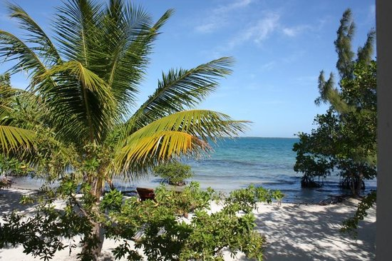 Coco Plum Island Resort: View from our cabana