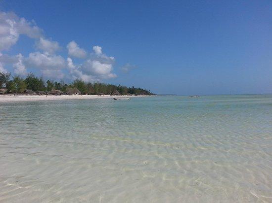 Hakuna Majiwe Beach Lodge: panorama