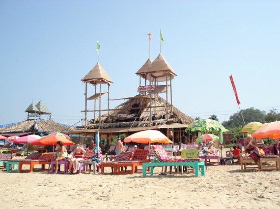 "Stringfellows Beach Shack: Stringfellos  the ""happy shack"""