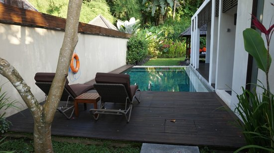 The Samaya Bali Ubud: Very private pool