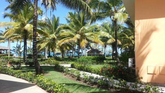 Grand Bahia Principe San Juan: Фрагмент территории