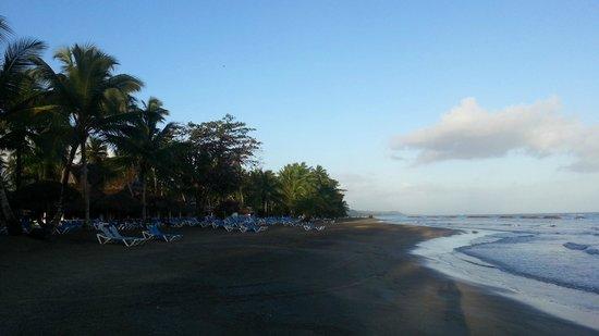 Grand Bahia Principe San Juan : Пляж