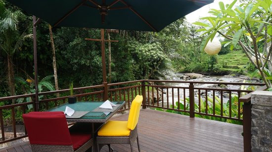 The Samaya Bali Ubud: View from restaurant