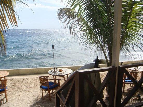Scuba Lodge & Suites: Área de restaurante.