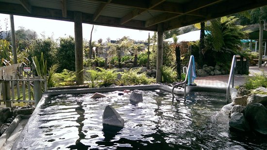 Waikite Valley Thermal Pools: One of public pools