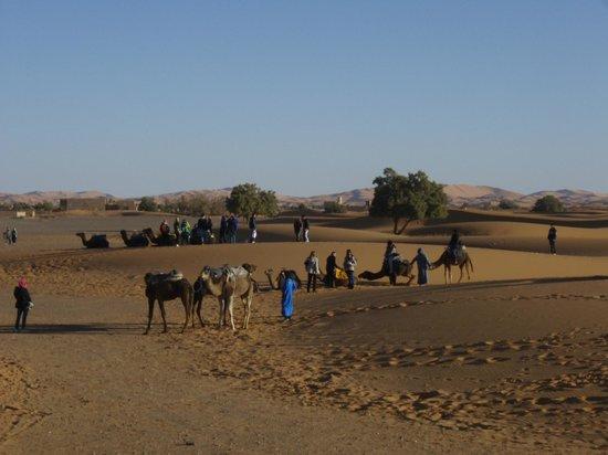 Palais des dunes: Caravana