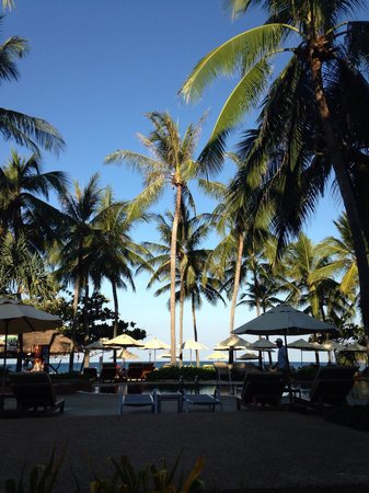 Katathani Phuket Beach Resort: Jardin