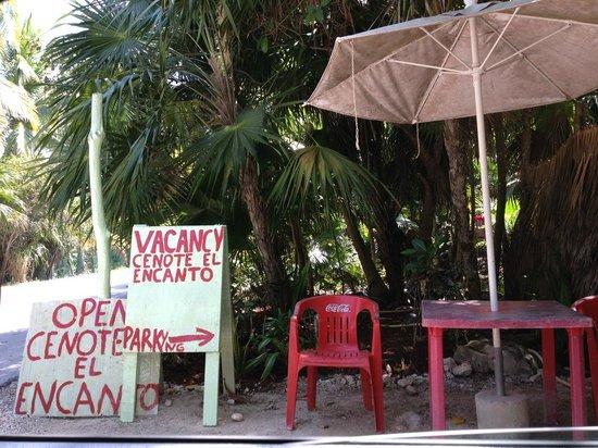 Posada Ecologica Dos Ceibas : El Encanto Cenote entrance