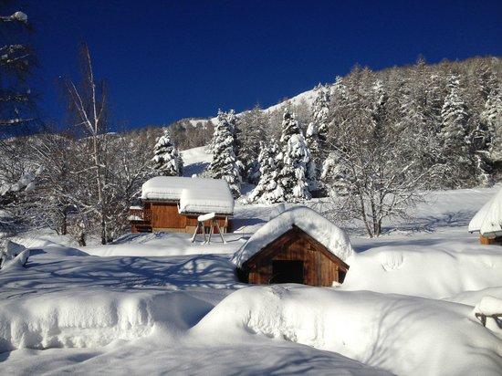 Chalet Hotel Les Blancs : Vue de l'hôtel