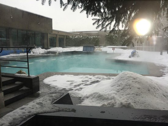 Hotel Bonaventure Montreal: Outdoor pool