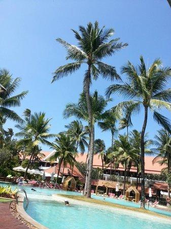 Patong Beach Hotel : ホテルのプール