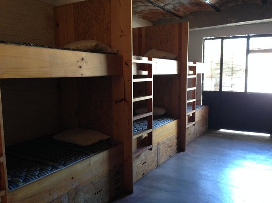Bed & Pizza- youth hostel: Dormitorio