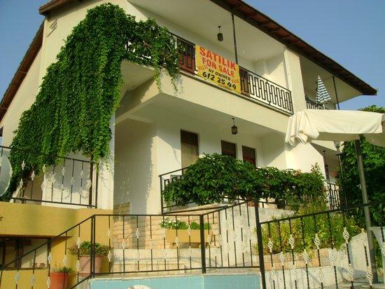 Gultepe Apartments : Отель