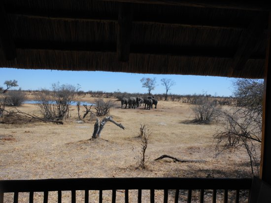 Nehimba Lodge: room with a view