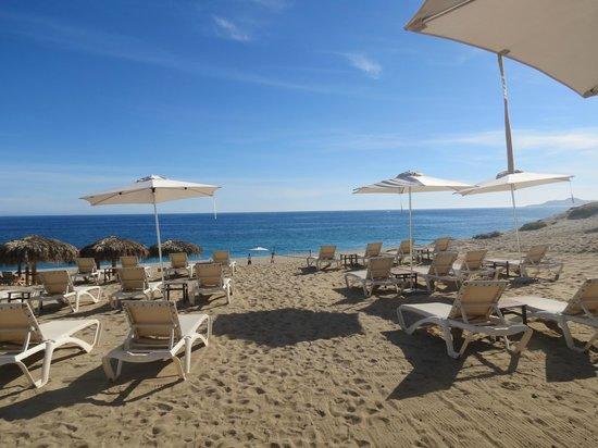 Secrets Puerto Los Cabos Golf And Spa Resort Tripadvisor