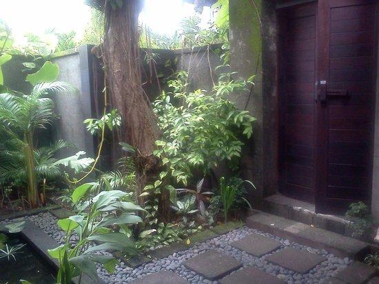 Mango Tree Villas: The front door