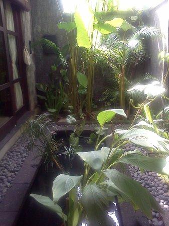 Mango Tree Villas : Entrance area