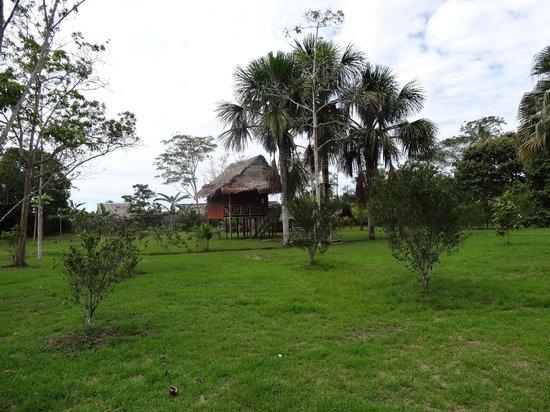 Tangarana  Ecolodge: Cabaña