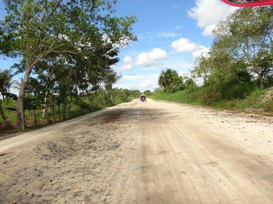 Tangarana  Ecolodge: Carretera para llegar al lodge