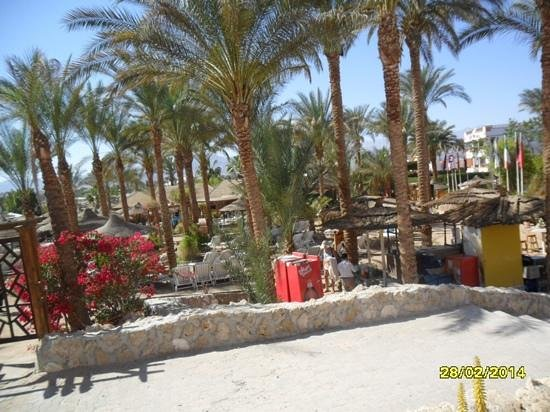 Le Royal Holiday Resort: beach