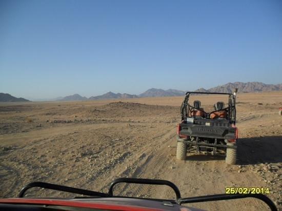 Le Royal Holiday Resort: desert