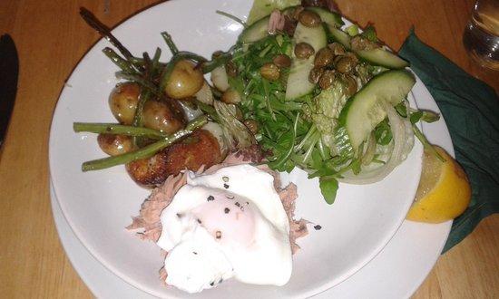 The Potting Shed Cafe: Tuna Nicoise Salad