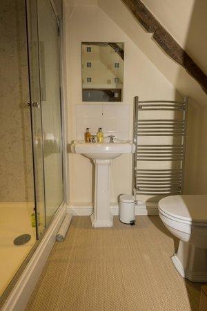 Tredudwell Manor: Room 8 en-suite