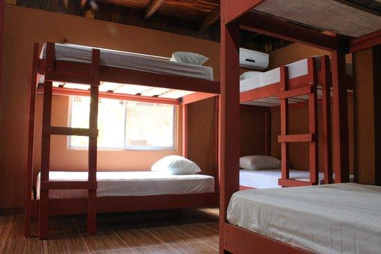 Coral Reef Surf Hostel: Dormitorio compartido
